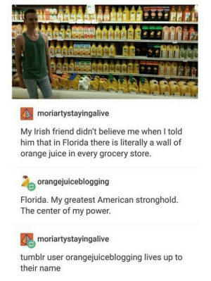 Irish, Juice, and Tumblr: moriartystayingalive  My Irish friend didn't believe me when I told  him that in Florida there is literally a wall of  orange juice in every grocery store  orangejuiceblogging  Florida. My greatest American stronghold  The center of my power  moriartystayingalive  tumblr user orangejuiceblogging lives up to  their name Wall of Orange Juice