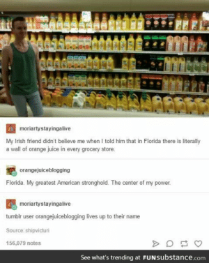 Irish, Juice, and Tumblr: moriartystayingalive  My Irish friend didn't believe me when I told him that in Florida there is literally  a wall of orange juice in every grocery store.  orangejuiceblogging  Florida. My greatest American stronghold. The center of my power.  moriartystayingalive  tumblr user orangejuiceblogging lives up to their name  Source: shipvicturi  156,079 notes  See what's trending at FUNSubstance.com  A That's a lot of orange juice