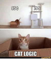For more cute pics LIKE us at The Purrfect Feline Page: MOS  95C  CAT LOGIC  funny CO For more cute pics LIKE us at The Purrfect Feline Page
