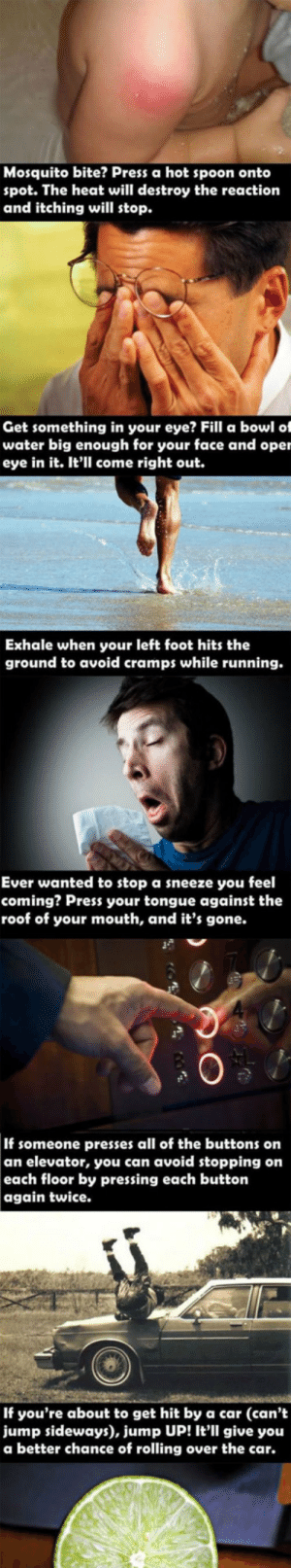 laughoutloud-club:  I Bet You Didn't Know: Mosquito bite? Press a hot spoon onto  spot. The heat will destroy the reaction  and itching will stop.  Get something in your eye? Fill a bowl of  water big enough for your face and oper  eye in it. It'll come right out.  Exhale when your left foot hits the  ground to avoid cramps while running.  Ever wanted to stop a sneeze you feel  coming? Press your tongue against the  roof of your mouth, and it's gone.  3  0  If someone presses all of the buttons on  an elevator, you can avoid stopping on  each floor by pressing each button  again twice.  If you're about to get hit by a car (can't  jump sideways), jump UP! It'll give you  a better chance of rolling over the car. laughoutloud-club:  I Bet You Didn't Know