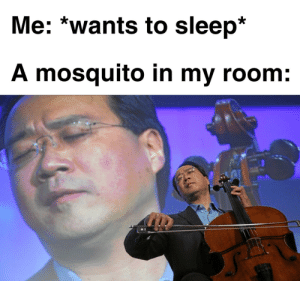 Mosquito goes bzzz by royal-seal MORE MEMES: Mosquito goes bzzz by royal-seal MORE MEMES