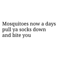 Facts, Funny, and Lol: Mosquitoes now a days  pull ya socks down  and bite you Facts only lol funniest15 viralcypher funniest15seconds