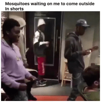 Funny, Twitter, and Lmfao: Mosquitoes waiting on me to come outside  In shorts Foreal lmfao 🤣 👉🏽(via: A1minute-twitter)