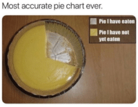 pie chart: Most accurate pie chart ever.  Pie I have eaten  Pie I have not  yet eaten