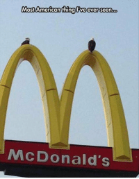 'MERICA!: Most American thing Ive ever seen  o  McDonald's 'MERICA!