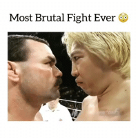Memes, Fight, and 🤖: Most Brutal Fight Ever
