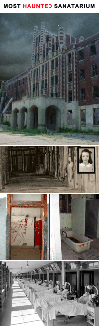 Bodies , Pregnant, and Target: MOST HAUNTED SANATARIUM eternalbunnydoom:  just-finee:  sixpenceee:  WAVERLY HILL SANATORIUM I have received so many messages requesting me to make this post. After looking into it, I realized why.  The hospital was always dedicated to the treatment of tuberculosis patients, a disease that was fairly common in the early 20th Century. It is estimated that as many as 63,000 people died as the sanatorium. Those deaths coupled with the reports of severe mistreatment of patients and highly questionable experiments and procedures are ingredients for a haunted location. One of the most famous things about is the death tunnel. So many people were dying because of tuberculosis, that this tunnel was used to carry the bodies out without other patients having to see them.   In room 502 (episode feature in ghost hunters), it was said that there was a murder/suicide of a nurse.   Legend says the nurse found out she was pregnant by the owner of the sanatorium without being married and had contracted tuberculosis, so she hanged herself with a light bulb wire outside the room she was in at the time.  Ghost investigators who have ventured into Waverly have reported a host of strange paranormal phenomena, including voices of unknown origin, isolated cold spots and unexplained shadows. Screams have been heard echoing in its now abandoned hallways, and fleeting apparitions have been encountered. You can read about one investigation case here Visit the official website here  damn. READ THE WHOLE INVESTIGATION.  READ THE INVESTIGATION.