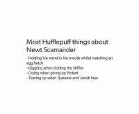 SPOILER WARNING FOR FANTASTIC BEASTS  . . . . . . . . . . . . . My precious child Newt  ~Loony Snitch: Most Hufflepuff things about  Newt Scamander  Holding his wand in his mouth whilst watching an  egg hatch  Giggling when tickling the Niffler  Crying when giving up Pickett  Tearing up when Queenie and Jacob kiss SPOILER WARNING FOR FANTASTIC BEASTS  . . . . . . . . . . . . . My precious child Newt  ~Loony Snitch