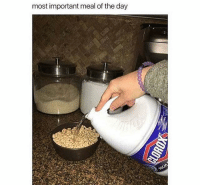 Most Important Meal Of The Day: most important meal of the day