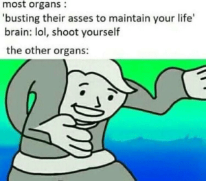 Dank, Life, and Lol: most organs  'busting their asses to maintain your life  brain: lol, shoot yourself  the other organs: Kerblam by WingleWangler MORE MEMES