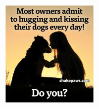 Dogs, Memes, and 🤖: Most owners admit  to hugging and kissing  their dogs every day!  shakepaws.com  Do you? I do :)