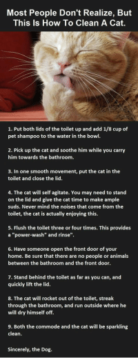 "Animals, Run, and Smooth: Most People Don't Realize, But  This Is How To Clean A Cat.  1. Put both lids of the toilet up and add 1/8 cup of  pet shampoo to the water in the bowl.  2. Pick up the cat and soothe him while you carry  him towards the bathroom.  3. In one smooth movement, put the cat in the  toilet and close the lid.  4. The cat will self agitate. You may need to stand  on the lid and give the cat time to make ample  suds. Never mind the noises that come from the  toilet, the cat is actually enjoying this.  5. Flush the toilet three or four times. This provides  a ""power-wash"" and rinse"".  6. Have someone open the front door of your  home. Be sure that there are no people or animals  between the bathroom and the front door.  7. Stand behind the toilet as far as you can, and  quickly lift the lid.  8. The cat will rocket out of the toilet, streak  through the bathroom, and run outside where he  will dry himself off.  9. Both the commode and the cat will be sparkling  clean.  Sincerely, the Dog. <p>How To Clean Your Cat.</p>"