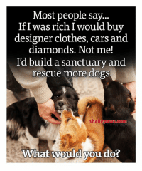 Cars, Clothes, and Dogs: Most people sav  If I was rich I would bu  designer clothes, cars and  diamonds. Not me!  I'd build a sanctuary and  rescue more dogs  shakepaws.com  What would you do?