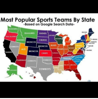 Memes, Google Search, and Seahawks: Most Popular Sports Teams By State  -Based on Google Search Data  SEAHAWKS  SEAHAWKS  VIKINGS  VIKINGS  RAIL BLAIIRS  PACKERS  VIKINGS  BILLS  BRONCOS  TIGER  BRONCOS  BEARS  PIRATES  EAGLES  COWBOYS  BEA  JAZZ  BRONCOS  RAIDERS  CHIEFS  REDS  PANTHIES  GROZZLES NALS cowMOYS  COWBOYS  BEAVIS BRAVES  COWBOYS WordOnDaStreet