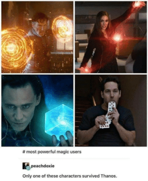 Magic, Powerful, and Only One:  #most powerful magic users  peachdoxie  Only one of these characters survived Thanos. Me_irl