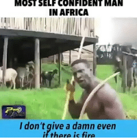 Whose mans is this 😂 😂: MOST SELF CONFIDENT MAN  IN AFRICA  I don't give a damn even  if there is fire Whose mans is this 😂 😂