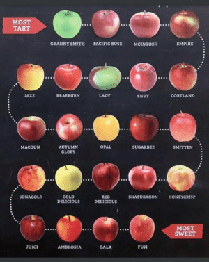 Know your apple: MOST  TART  GRANNY SMITH  PACIFIC ROSE  MCINTOSH  EMPIRE  BRAEBURN  LADY  CORTLAND  JAZZ  ENVY  OPAL  AUTUMN  SUGARBEE  SMITTEN  MACOUN  GLORY  JONAGOLD  GOLD  DELICIOUS  RED  DELICIOUS  SNAPDRAGON  HONEYCRISP  MOST  SWEET  FUJI  JUICI  AMBROSIA  GALA Know your apple