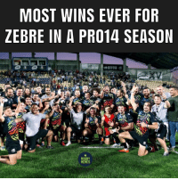 Memes, Rugby, and For: MOST WINS EVER FOR  ZEBRE IN A PR014 SEASON  RUGBY  MEMES Progress this season for the Italians 👍🏽🇮🇹 rugby zebre pro14
