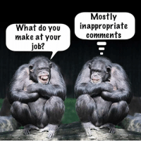what do: Mostly  What do you  inappropriate  comments  make at your  job?