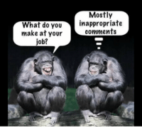 Job, Make, and You: Mostly  What do You  make at your  job?  inappropriate  comments .