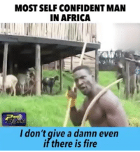 😭😭😭😭😭😭😭😭: MOSTSELF CONFIDENT MAN  IN AFRICA  I don't give a damn even  if there is fire 😭😭😭😭😭😭😭😭
