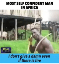 😂😂😂 viralcypher f15s funniest15seconds Email: funniest15seconds@yahoo.com Website : www.viralcypher.com: MOSTSELF CONFIDENT MAN  IN AFRICA  I don't give a damn even  if there is fire 😂😂😂 viralcypher f15s funniest15seconds Email: funniest15seconds@yahoo.com Website : www.viralcypher.com