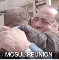 Friends, Instagram, and Memes: MOSUL REUNION 31 MAR: BBC journalist Basheer Al Zaidi grew up in Mosul, the Iraqi city seized by so-called Islamic State in 2014. Iraqi forces are currently engaged in a fierce battle to re-take the city, and eastern Mosul has been freed from IS rule. Basheer has returned to Mosul to meet friends who lived through the siege. In the first of a three-part Instagram series, he pays a surprise visit to his old friend Kareem. Find out more: bbc.in-homecoming Mosul Iraq BasheerAlZaidi Reunion Friendship War MiddleEast BBCShorts BBCNews @BBCNews ReturnToMosul