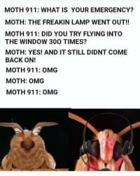 Memes, Omg, and What Is: MOTH 911: WHAT IS YOUR EMERGENCY?  MOTH: THE FREAKIN LAMP WENT OUT!!  MOTH 911: DID YOU TRY FLYING INTO  THE WINDOW 300 TIMES?  MOTH: YES! AND IT STILL DIDNT COME  BACK ON!  MOTH 911: OMG  MOTH: OMG  MOTH 911: OMG i just killed a möth