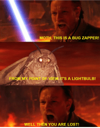Memes, Lost, and What Is: MOTH, THIS IS A BUG ZAPPER!  FROM.MY POINT-OF VIEW.IT'S A LIGHTBULBI  WELL THEN YOU ARE LOST! WHAT IS THE PROBLEM WOTH ALL THESE MOTH MEMES