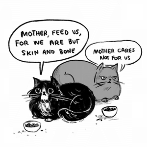 Cats, Memes, and Victorian: MOTHER, FEED US,  FOR WE ARE Bur  SKIN AND BONE/MOTHER CAREs  NoT FOR VS  MAH HİLLAM I don't know when I decided my cats talk like Victorian orphans but I'm liking it