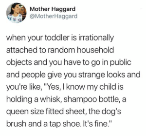 "I'm handling it thanks. 😒  (via Twitter.com/MotherHaggard): Mother Haggard  @MotherHaggard  when your toddler is irrationally  attached to random household  objects and you have to go in public  and people give you strange looks and  you're like, ""Yes, I know my child is  holding a whisk, shampoo bottle, a  queen size fitted sheet, the dog's  brush and a tap shoe. It's fine."" I'm handling it thanks. 😒  (via Twitter.com/MotherHaggard)"
