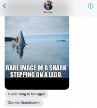 Jewish, Just Giving, and Images Of: Mother  RARE IMAGE OF A SHARK  STEPPING ON A LEGO  A pain i long to feel again  Give me Grandspawn. How about I just give you a lego? crazyjewishmom