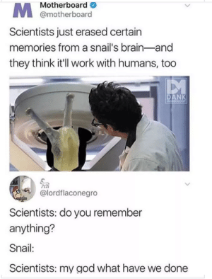 scientists: Motherboard  @motherboard  Scientists just erased certain  memories from a snail's brain-and  they think it'l work with humans, too  PM  @lordflaconegro  Scientists: do you remember  anything?  Snail:  Scientists: my god what have we done