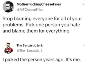 Dank, Memes, and Target: MotherFuckingCheese Fries  @MFCheeseFries  Stop blaming everyone for all of your  problems. Pick one person you hate  and blame them for everything  The Sarcastic Jerk  @The_Sarcastic_  picked the person years ago. It's me. meirl by Atharva77 MORE MEMES