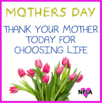 Life, Memes, and Mother's Day: MOTHERS DAY  THANK YOUR MOTHER  TODAY FOR  CHOOSING LIFE  NPLA Happy Mothers Day from NPLA!  Be sure to thank your Mother today for choosing LIFE!