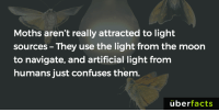 Memes, 🤖, and Light: Moths aren't really attracted to light  sources They use the  light from the moon  to navigate, and artificial light from  humans just confuses them  uber  facts Poor, confused moths... http://news.psu.edu/story/141283/2008/10/20/research/probing-question-why-are-moths-attracted-light