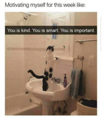 Smart, Motivation, and You: Motivating myself for this week like:  You is kind. You is smart. You is important. <p>Motivation</p>