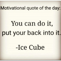 Motivational quote of the day:  You can do it,  put your back into it  Ice Cube Gm keepitking kingshit 💯👑💩