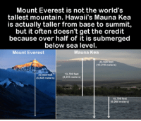 Memes, Mount Everest, and Hawaii: Mount Everest is not the world's  tallest mountain. Hawaii's Mauna Kea  is actually taller from base to summit,  but it often doesn't get the credit  because over half of it is submerged  below sea level.  Mount Everest  Mauna Kea  33,500 feet  (10,210 meters)  29,028 feet  13,796 feet  (8,848 meters)  4,205 meters)  l 19.70  feet  (6,000 meters)