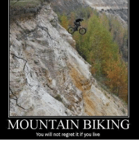 It looks better safe--Meme: @isaiahridess: MOUNTAIN BIKING  You will not regret it if you live It looks better safe--Meme: @isaiahridess