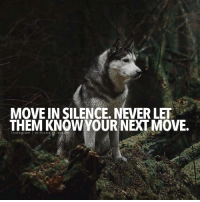 Memes, Silence, and 🤖: MOVE IN SILENCE. NEVER LET  THEM KNOWYOUR NEXT MOVE.  Instagram millionaire·d Silent but deadly millionairedream