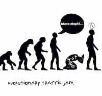 Memes, Traffic, and The Prophet: Move stupid...  EvoLutionARY TRAffic jArm. (The.Prophet)