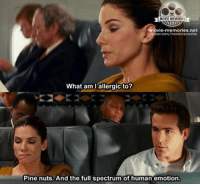 Memes, 🤖, and The Proposal: MOVIE MEMORIES  movie memories net.  tter.com/moviememories  What am I allergic to?  Pine nuts. And the full spectrum of human emotion. The Proposal