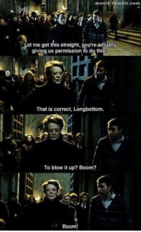 Harry Potter, Tumblr, and Movie: movie.tumblr.com  et me get this straight, you're actually  giving us permission to do thiS?  That is correct, Longbottom  To blow it up? Boom?  Boom! Boom
