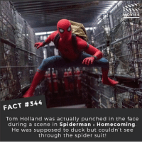 Memes, Movies, and Spider: MOVIES  FACT #344  Tom Holland was actually punched in the face  during a scene in Spiderman : Homecoming  He was supposed to duck but couldn't see  through the spider suit! Has anyone seen the leaked infinitywar trailer? 🎥 • • • • Double Tap and Tag someone who needs to know this 👇 All credit to the respective film and producers. movie movies film tv camera cinema fact didyouknow moviefacts cinematography screenplay director actor actress act acting movienight cinemas watchingmovies hollywood bollywood didyouknowmovies