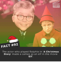 A Christmas Story, Elf, and Memes: MOVIES  FACT #92  The actor who played Ralphie in A Christmas  Story made a cameo as an elf in the movie  Elf' What do you think is the most iconic Christmas movie? . . . . . All credit to the respective film and producers. movie movies film tv marvel dc camera cinema fact didyouknow didyouknowmovies elf moviefacts santa christmas badsanta thegrinch snow northpole homealone merrychristmas