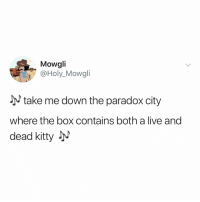 *googles what schrodinger's cat is and stays up til 4 AM*: Mowgli  @Holy_Mowgli  take me down the paradox city  where the box contains both a live and  dead kitty JM *googles what schrodinger's cat is and stays up til 4 AM*