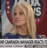 Conway, Memes, and That Feeling When: MP CAMPAIGN MANAGER REACTS TO  KELLY ANNE CONWAY  TRUMP CAMPAIGN @realDonaldTrump That feeling when your supposedly female-friendly campaign manager says you abuse women