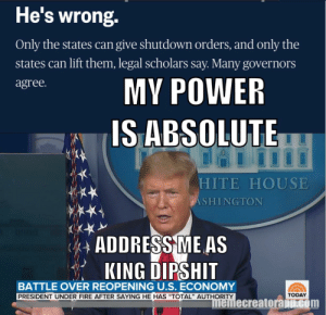 Mr. Absolute, Or king dipshit to you!: Mr. Absolute, Or king dipshit to you!