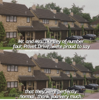 Memes, Proud, and 🤖: Mr. and Mrs Dursley of number  four Privet Drive, were proud to say  Harry Letter  that they were perfectly a  normal, thank you very much Have a great day !